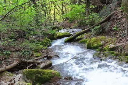 Что обозначает название реки Дерекойка в Крыму