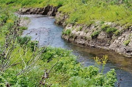 Притоки реки Альма в Крыму