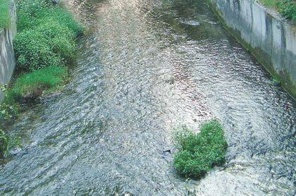 Притоки реки Салгир