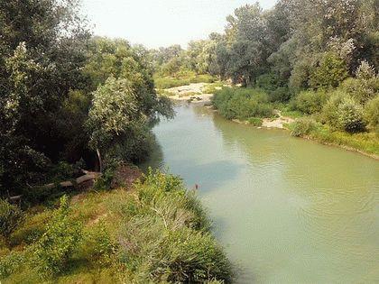 Река Абин