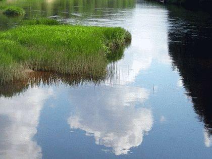 Река Агуа