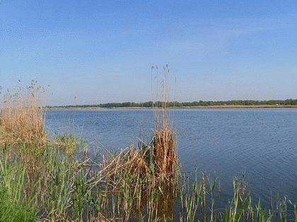 Река Албаши