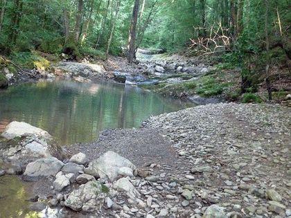 Река Аюк