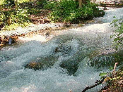 Река Бжид
