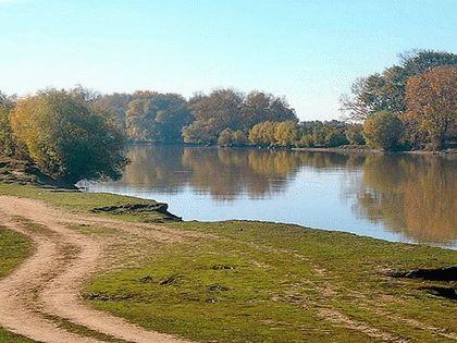 Река Протока