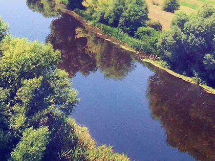 Река Синюха