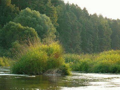 Река Веселая