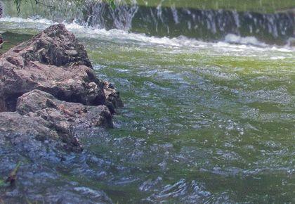 Течение реки Салгир