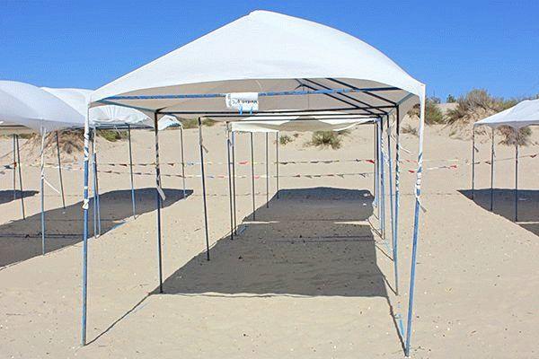 Пляж лагеря Буревестник в Анапе