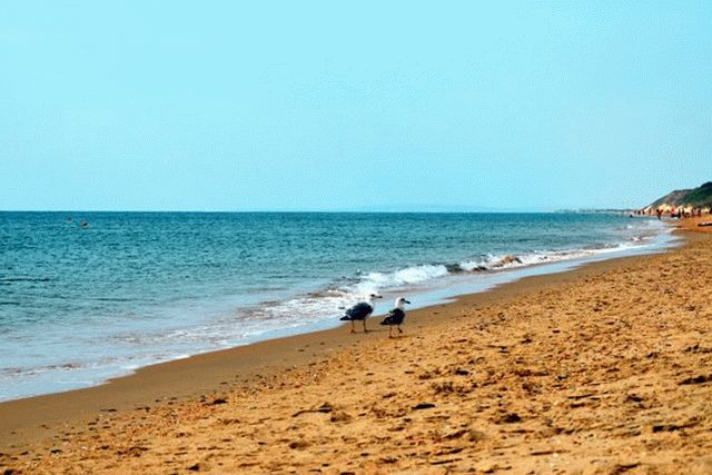 Пляж база отдыха Тамань